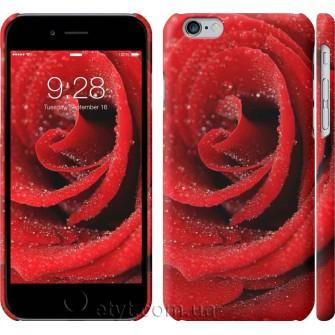 Чехол Красная роза 529c-45