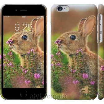 Чехол Кролик и цветы 3019c-45