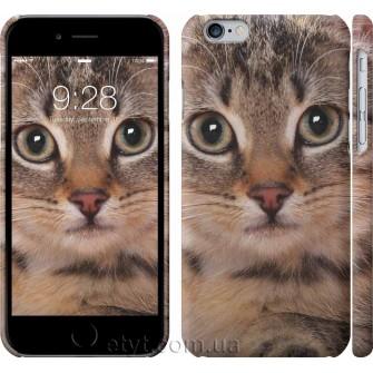 Чехол Полосатый котик 2978c-45